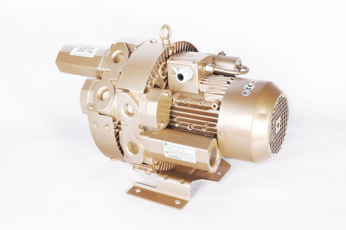 Ring 1.5kw Side Channel Vacuum Pump For Central Vacuum Systems 2 Stage GHBG 002 12 2R3